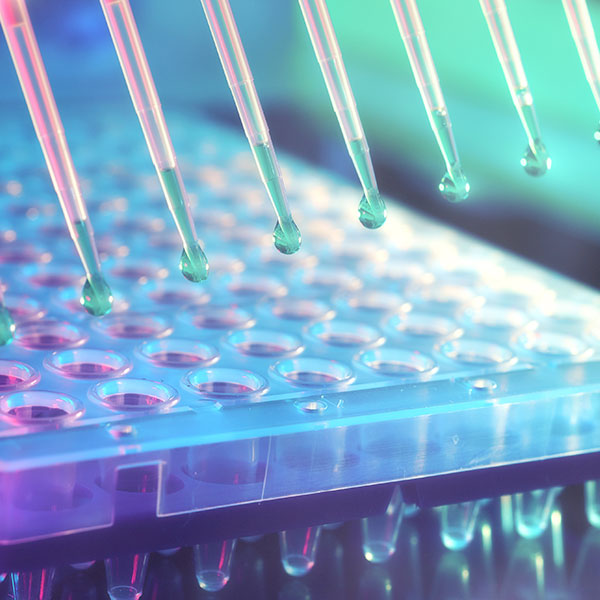 Molecular Testing